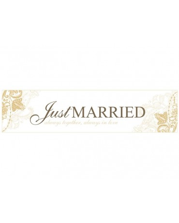 "Svadobné ŠPZ ""Just  Married"" 10ks"