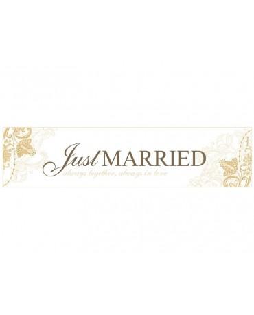 "Svadobné ŠPZ ""Just  Married"" 10ks"