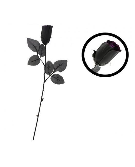 Čierna ruža 1ks