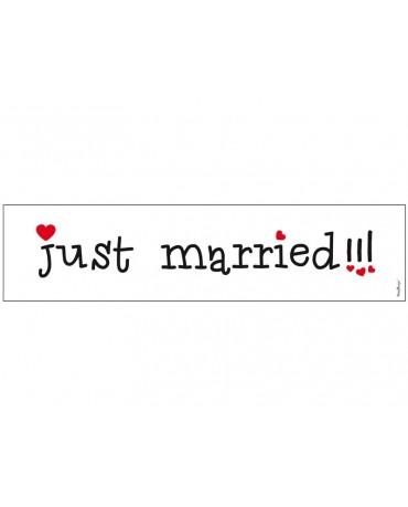 "Svadobné ŠPZ ""Just  Married""-biele 10ks"